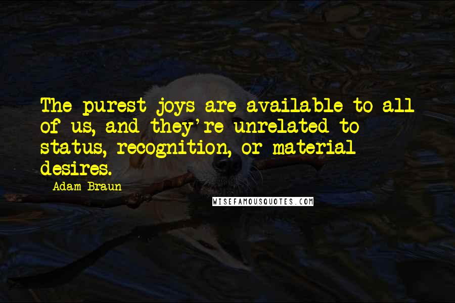 Adam Braun quotes: The purest joys are available to all of us, and they're unrelated to status, recognition, or material desires.