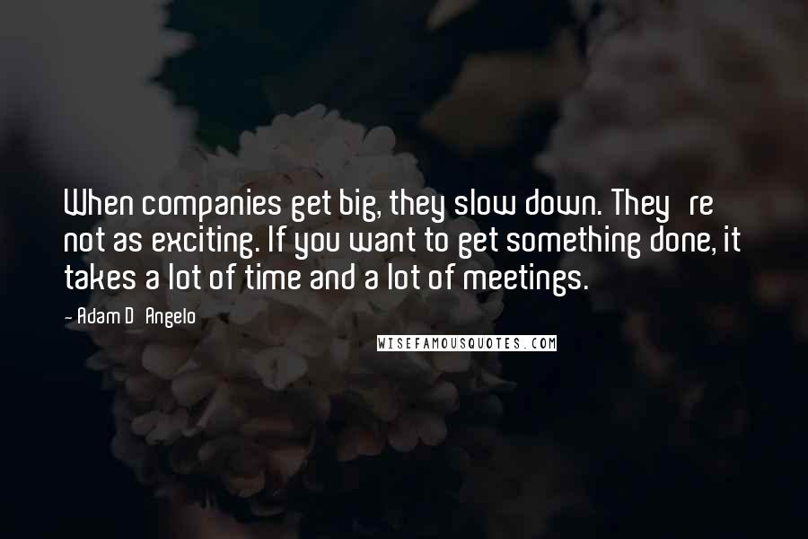 Adam D'Angelo quotes: When companies get big, they slow down. They're not as exciting. If you want to get something done, it takes a lot of time and a lot of meetings.