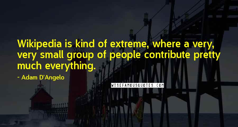 Adam D'Angelo quotes: Wikipedia is kind of extreme, where a very, very small group of people contribute pretty much everything.