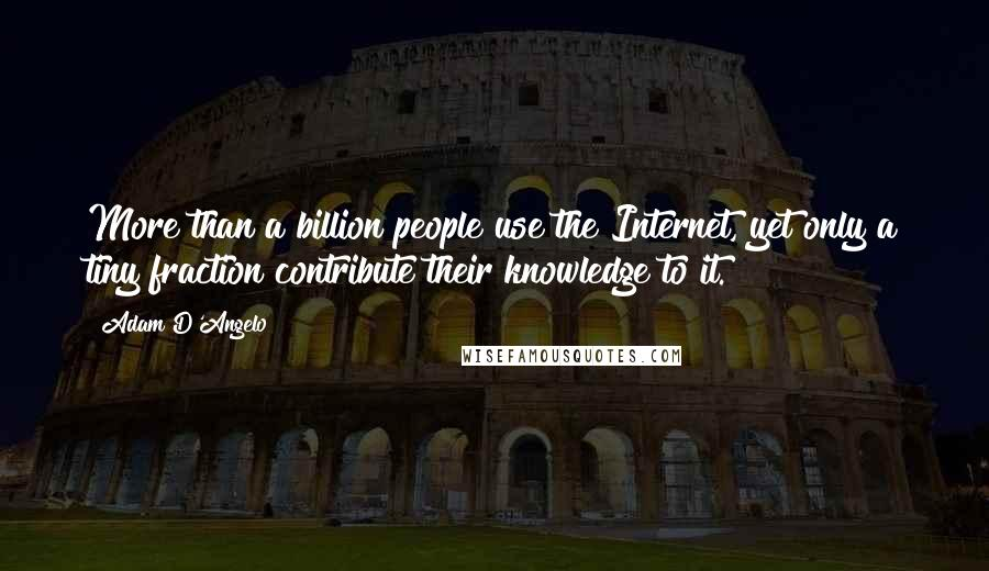 Adam D'Angelo quotes: More than a billion people use the Internet, yet only a tiny fraction contribute their knowledge to it.