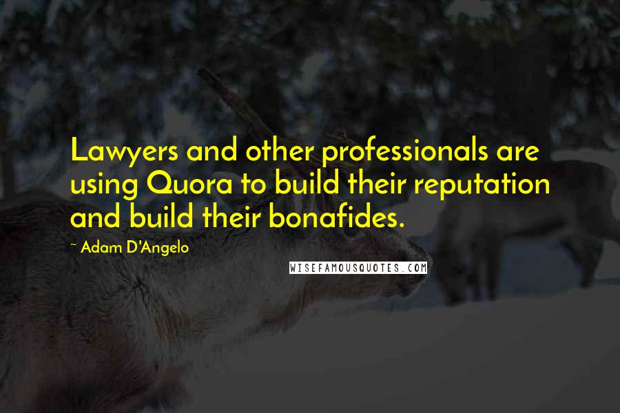 Adam D'Angelo quotes: Lawyers and other professionals are using Quora to build their reputation and build their bonafides.