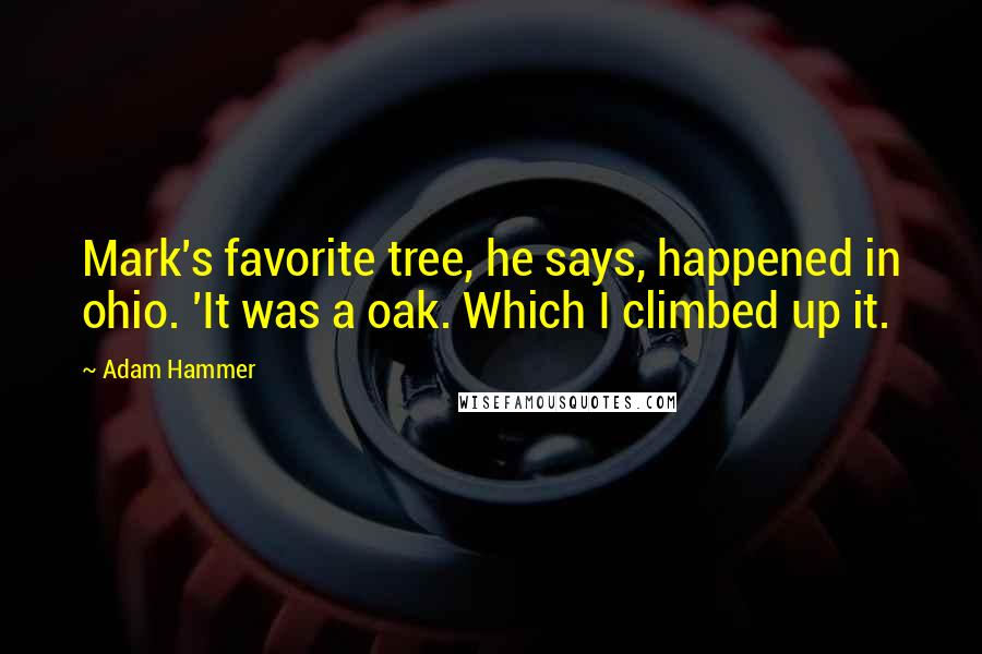 Adam Hammer quotes: Mark's favorite tree, he says, happened in ohio. 'It was a oak. Which I climbed up it.