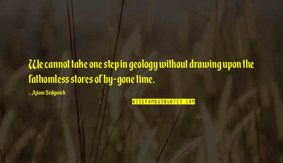 Adam Sedgwick Quotes By Adam Sedgwick: We cannot take one step in geology without