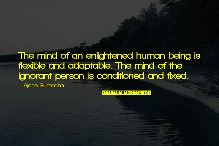 Adaptable Quotes By Ajahn Sumedho: The mind of an enlightened human being is