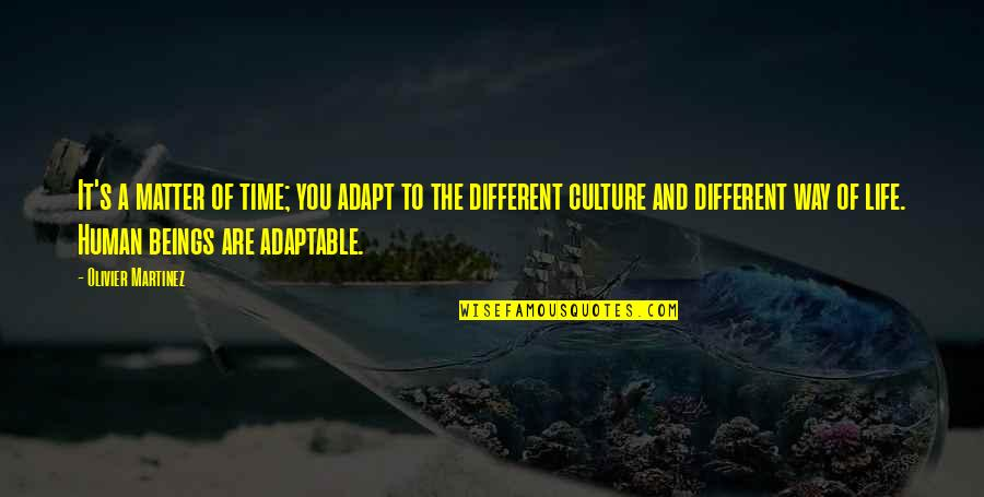 Adaptable Quotes By Olivier Martinez: It's a matter of time; you adapt to