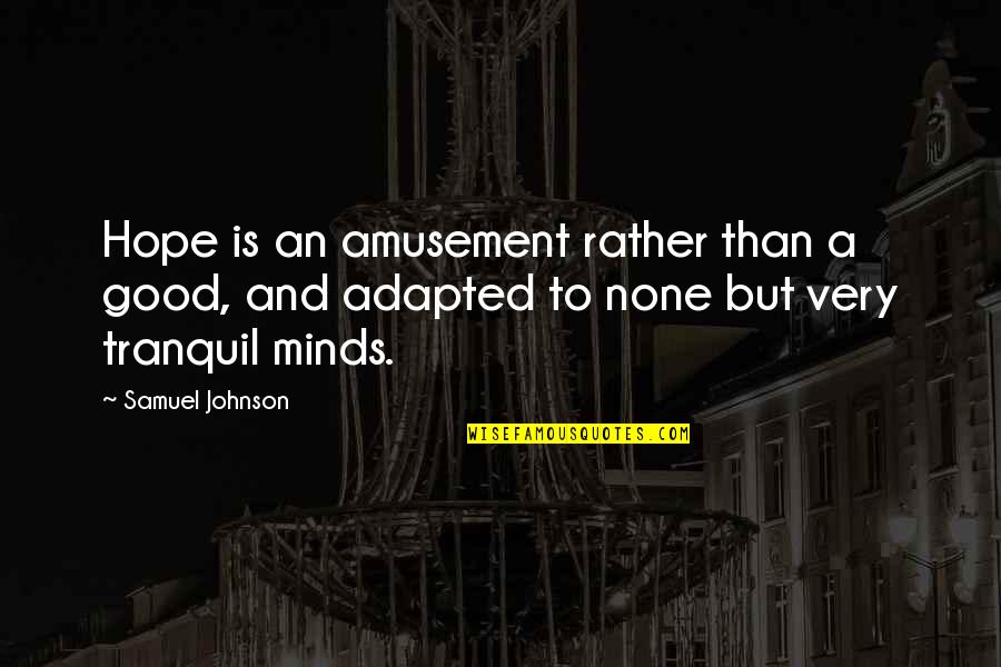 Adapted Quotes By Samuel Johnson: Hope is an amusement rather than a good,