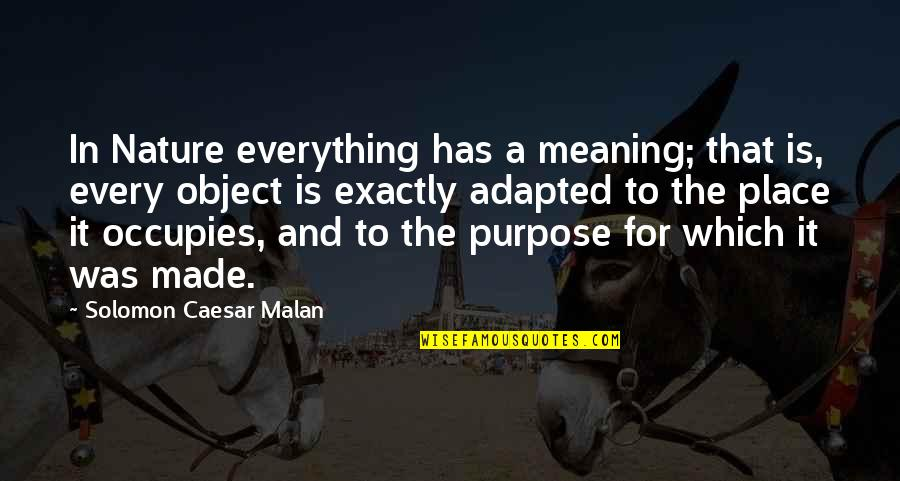 Adapted Quotes By Solomon Caesar Malan: In Nature everything has a meaning; that is,