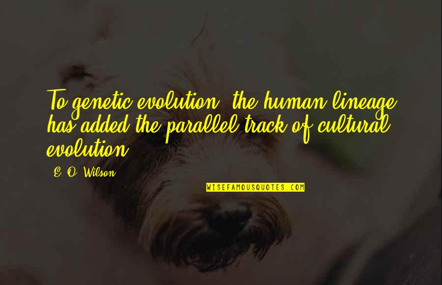 Added Quotes By E. O. Wilson: To genetic evolution, the human lineage has added