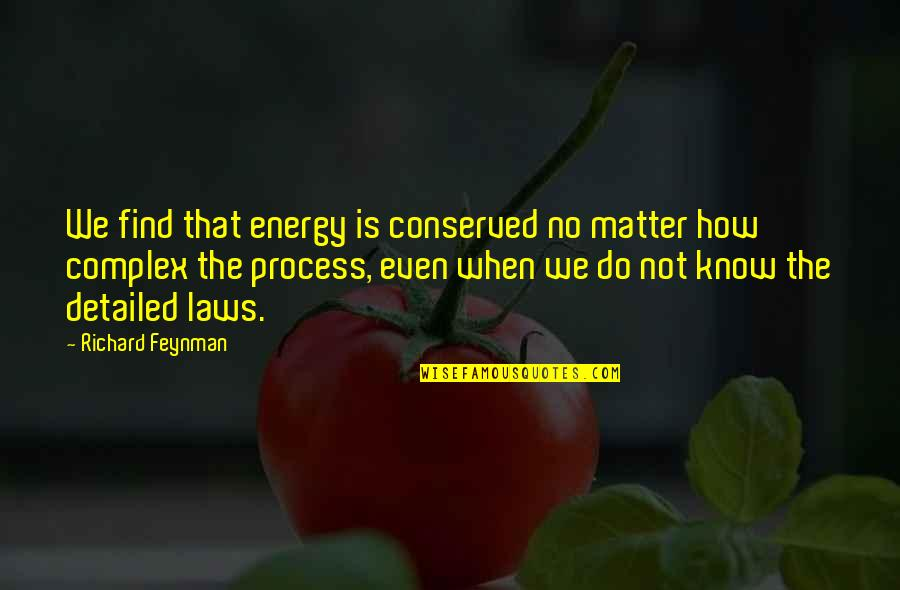 Adelinetta Quotes By Richard Feynman: We find that energy is conserved no matter