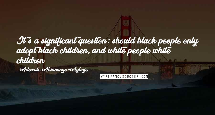 Adewale Akinnuoye-Agbaje quotes: It's a significant question: should black people only adopt black children, and white people white children?