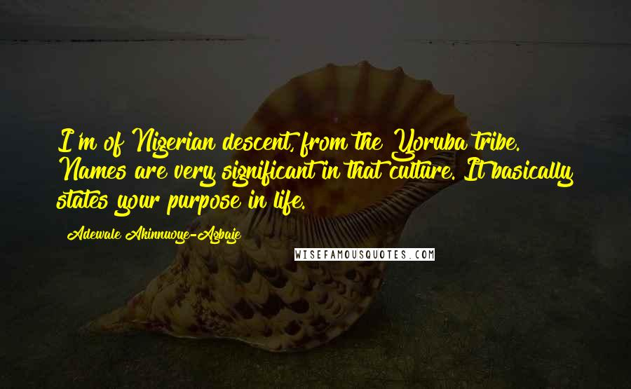 Adewale Akinnuoye-Agbaje quotes: I'm of Nigerian descent, from the Yoruba tribe. Names are very significant in that culture. It basically states your purpose in life.