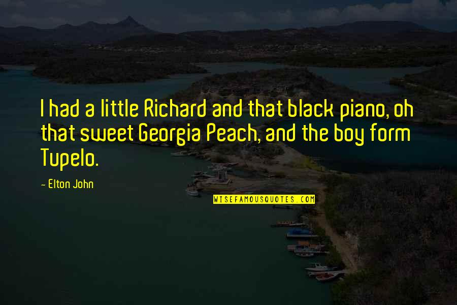 Adheres Quotes By Elton John: I had a little Richard and that black