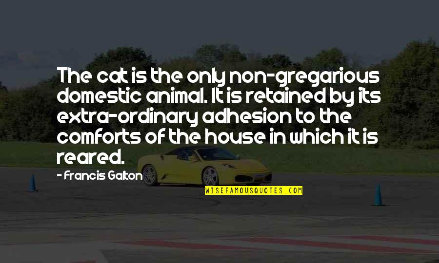 Adhesion Quotes By Francis Galton: The cat is the only non-gregarious domestic animal.