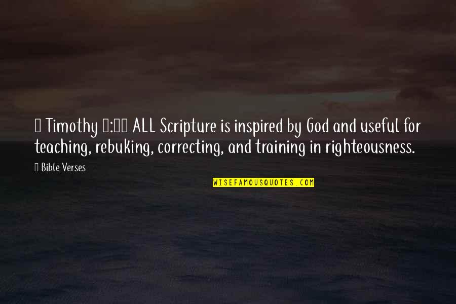 Adichie Ted Talk Quotes By Bible Verses: 2 Timothy 3:16 ALL Scripture is inspired by
