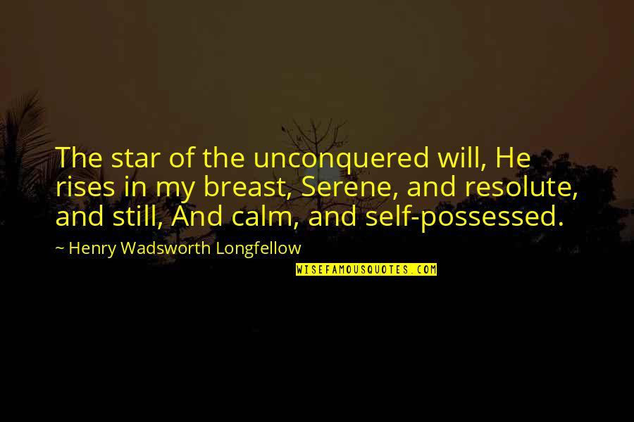Admiravel Mundo Novo Quotes By Henry Wadsworth Longfellow: The star of the unconquered will, He rises