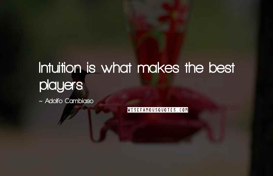 Adolfo Cambiaso quotes: Intuition is what makes the best players.