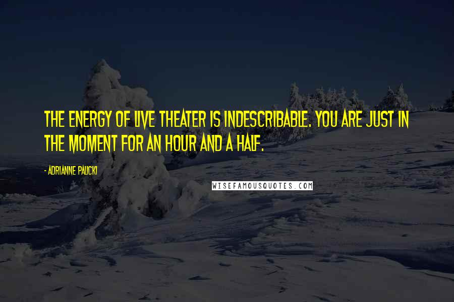 Adrianne Palicki quotes: The energy of live theater is indescribable. You are just in the moment for an hour and a half.