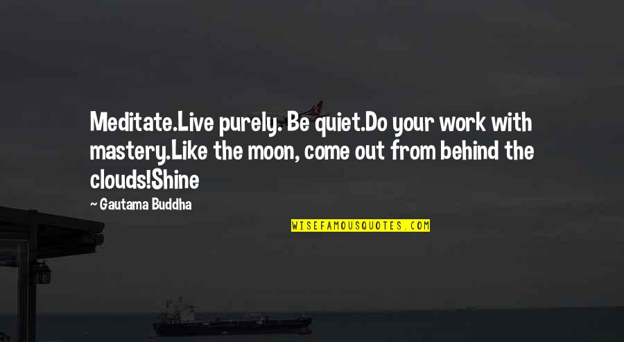 Advice For Daily Living Quotes By Gautama Buddha: Meditate.Live purely. Be quiet.Do your work with mastery.Like