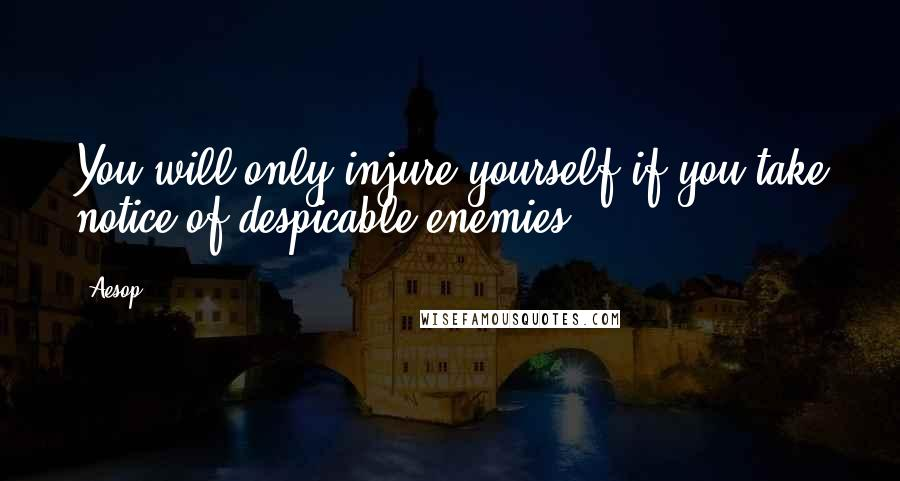 Aesop quotes: You will only injure yourself if you take notice of despicable enemies.