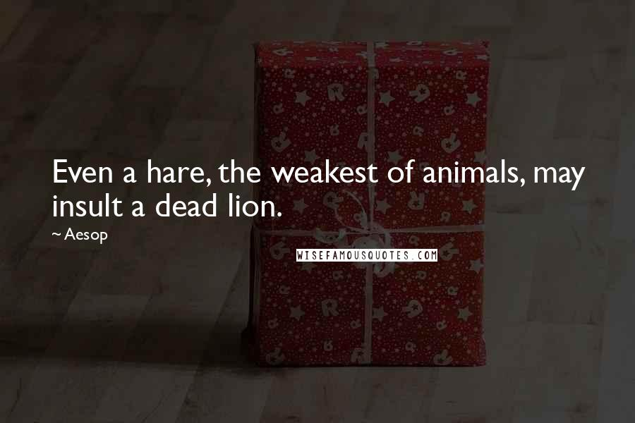 Aesop quotes: Even a hare, the weakest of animals, may insult a dead lion.