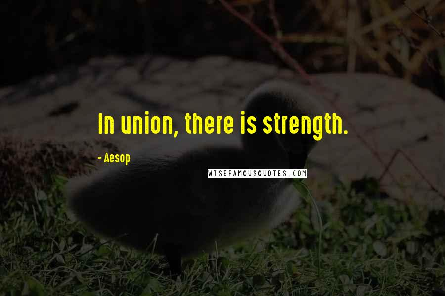 Aesop quotes: In union, there is strength.