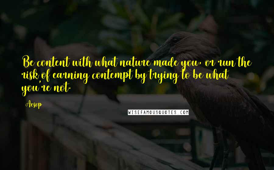 Aesop quotes: Be content with what nature made you, or run the risk of earning contempt by trying to be what you're not.