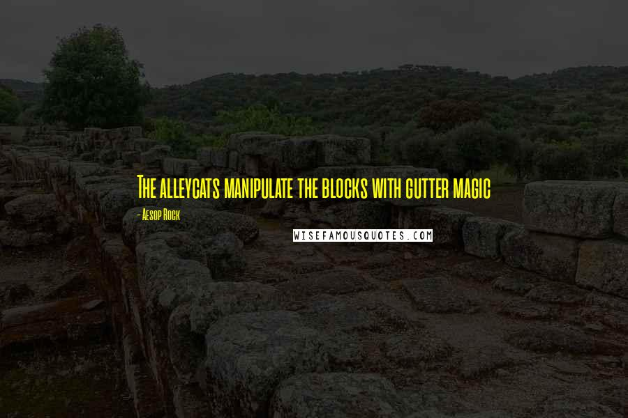 Aesop Rock quotes: The alleycats manipulate the blocks with gutter magic