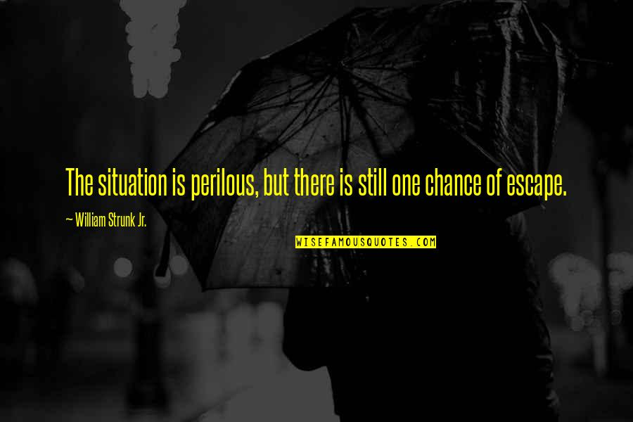 African Revolutionaries Quotes By William Strunk Jr.: The situation is perilous, but there is still