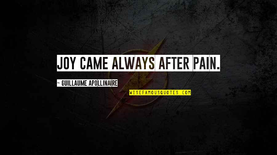 After All The Pain Quotes By Guillaume Apollinaire: Joy came always after pain.
