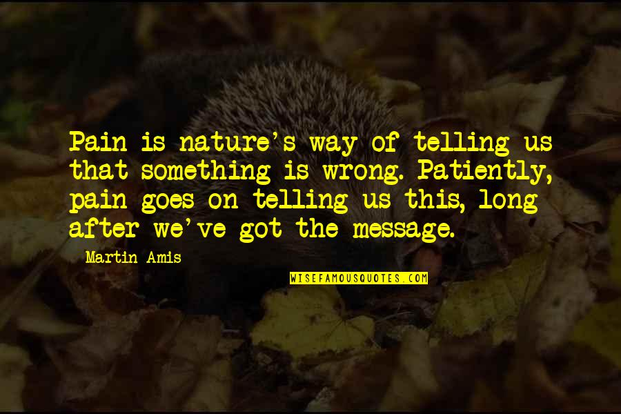 After All The Pain Quotes By Martin Amis: Pain is nature's way of telling us that
