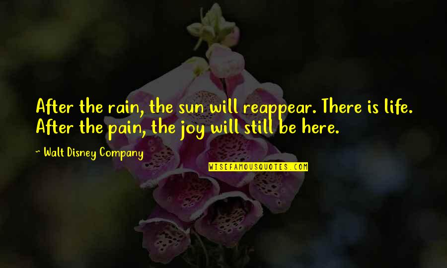 After All The Pain Quotes By Walt Disney Company: After the rain, the sun will reappear. There