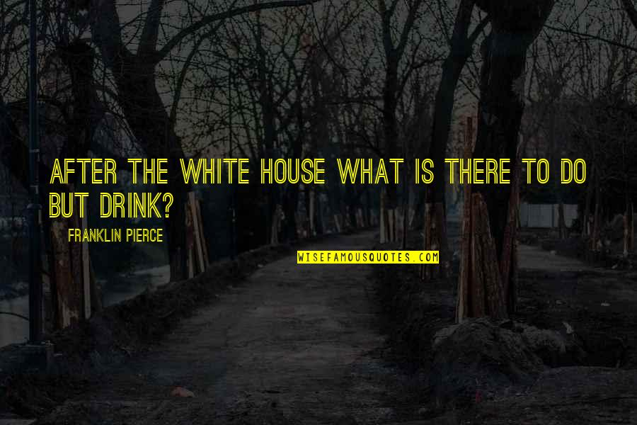 After The Quotes By Franklin Pierce: After the White House what is there to