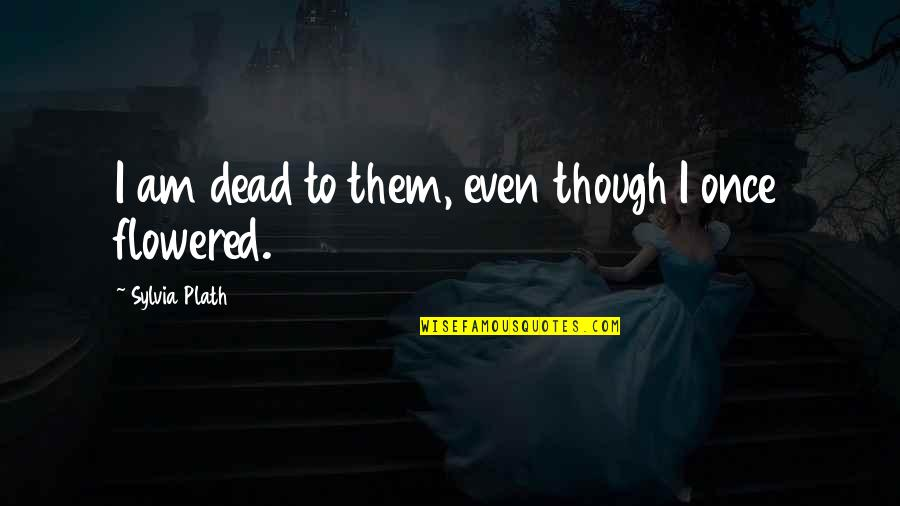 After Tiller Quotes By Sylvia Plath: I am dead to them, even though I