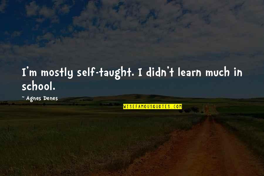 Agnes Denes Quotes By Agnes Denes: I'm mostly self-taught. I didn't learn much in