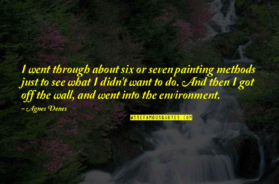 Agnes Denes Quotes By Agnes Denes: I went through about six or seven painting