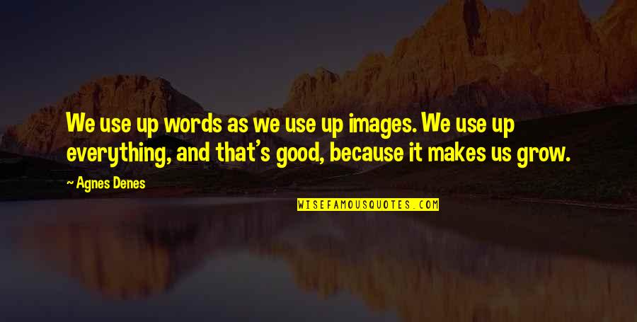 Agnes Denes Quotes By Agnes Denes: We use up words as we use up