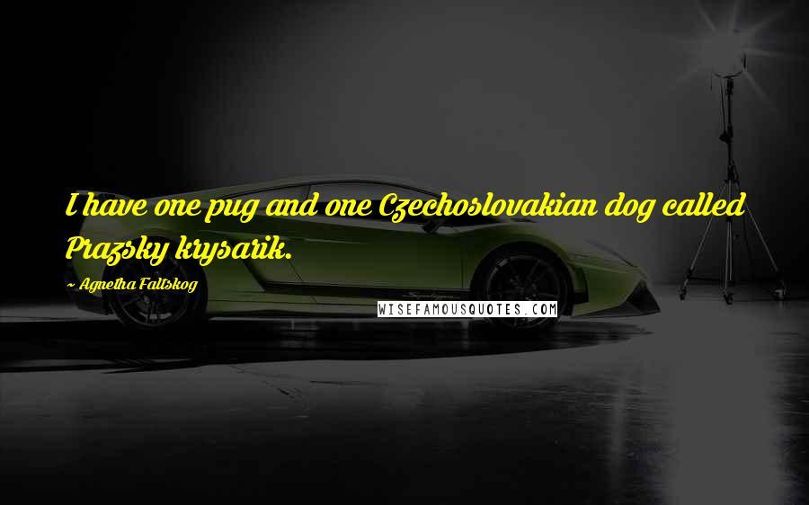Agnetha Faltskog quotes: I have one pug and one Czechoslovakian dog called Prazsky krysarik.