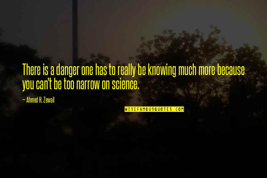 Ahmed Zewail Quotes By Ahmed H. Zewail: There is a danger one has to really