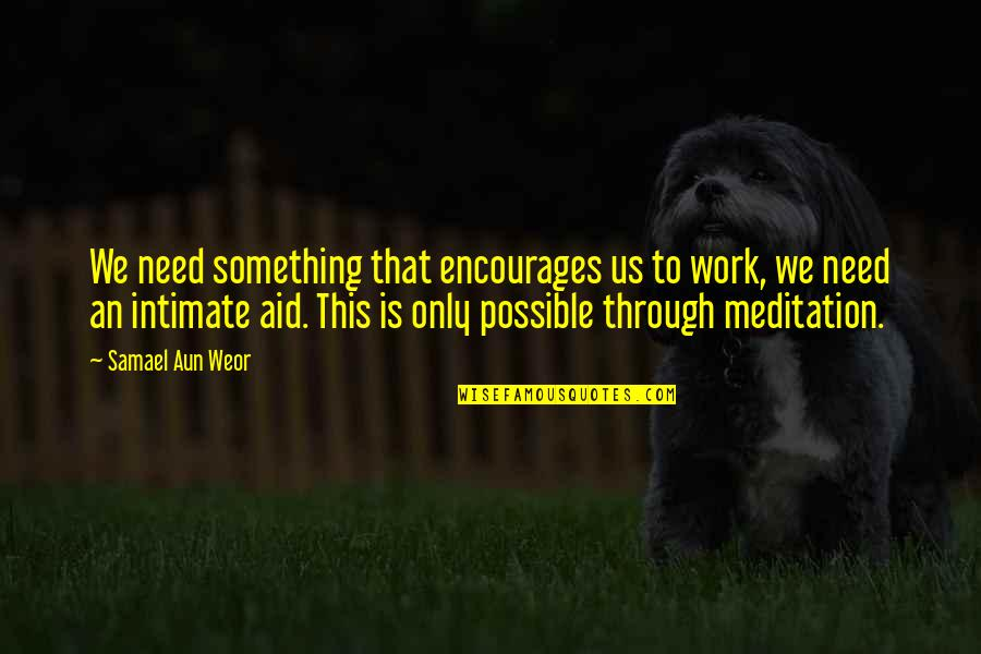Aid Work Quotes By Samael Aun Weor: We need something that encourages us to work,