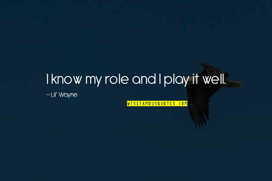 Aim High Short Quotes By Lil' Wayne: I know my role and I play it