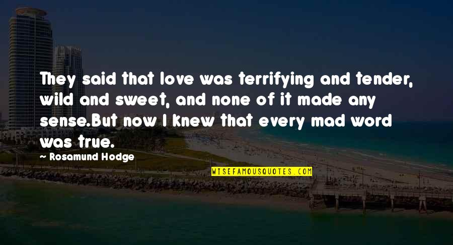Akame Ga Kiru Quotes By Rosamund Hodge: They said that love was terrifying and tender,