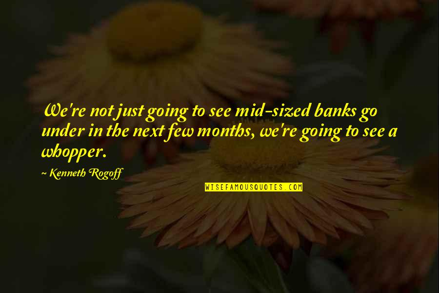 Akmal Quotes By Kenneth Rogoff: We're not just going to see mid-sized banks
