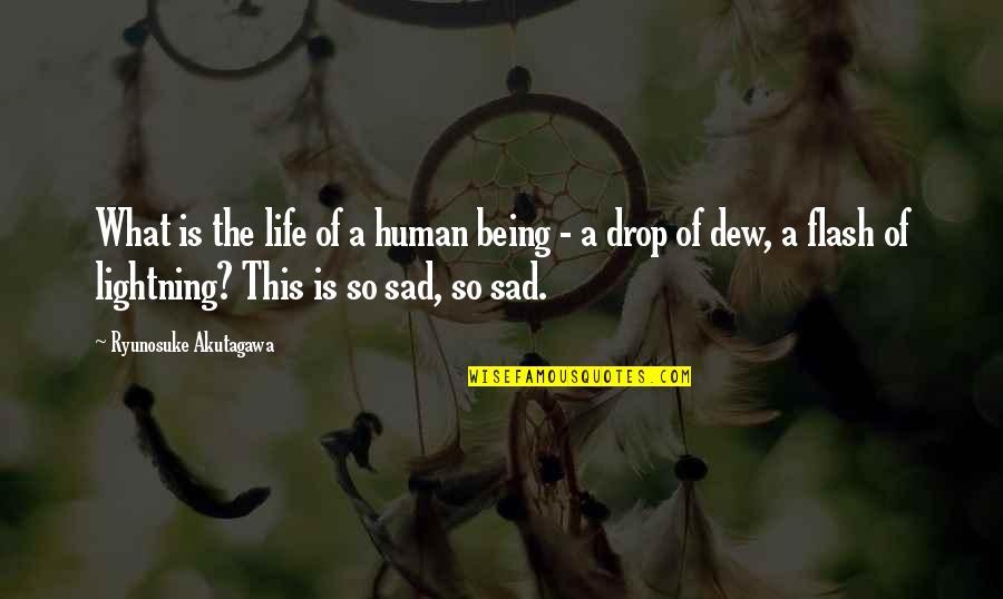 Akutagawa Quotes By Ryunosuke Akutagawa: What is the life of a human being