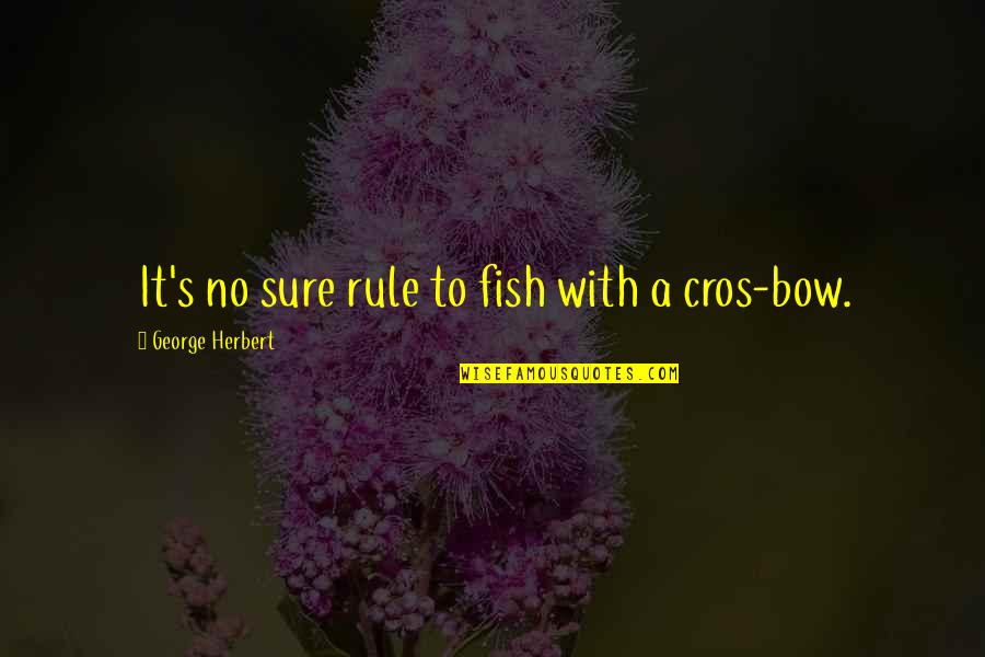 Ala Eh Quotes By George Herbert: It's no sure rule to fish with a