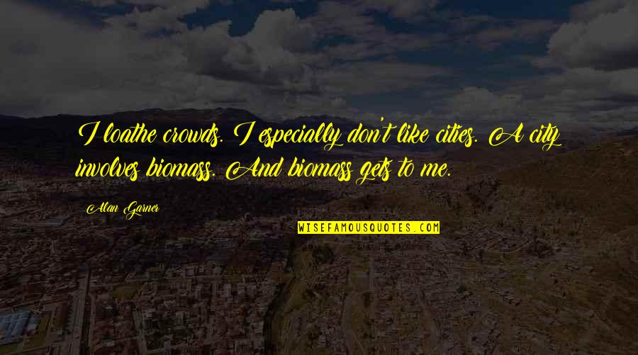 Alan Garner Quotes By Alan Garner: I loathe crowds. I especially don't like cities.