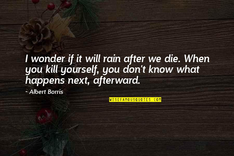 Albert Borris Quotes By Albert Borris: I wonder if it will rain after we