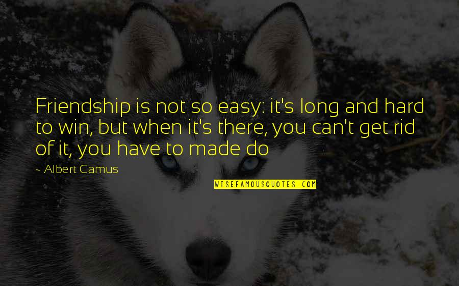 Albert's Quotes By Albert Camus: Friendship is not so easy: it's long and