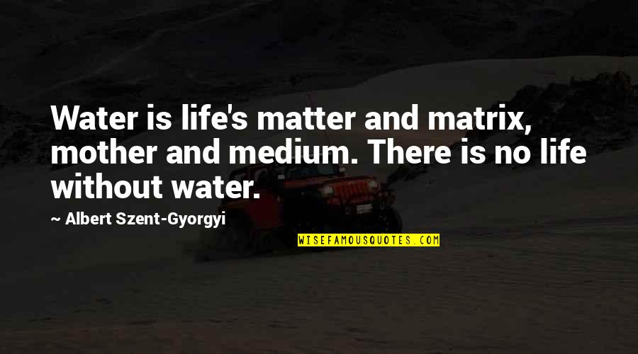 Albert's Quotes By Albert Szent-Gyorgyi: Water is life's matter and matrix, mother and