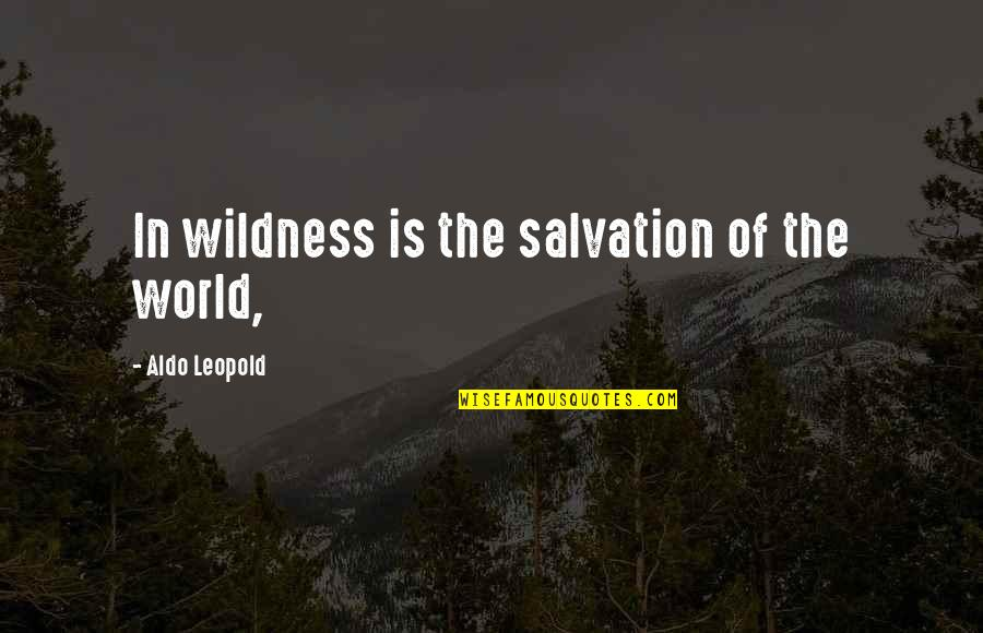 Aldo Leopold Quotes By Aldo Leopold: In wildness is the salvation of the world,