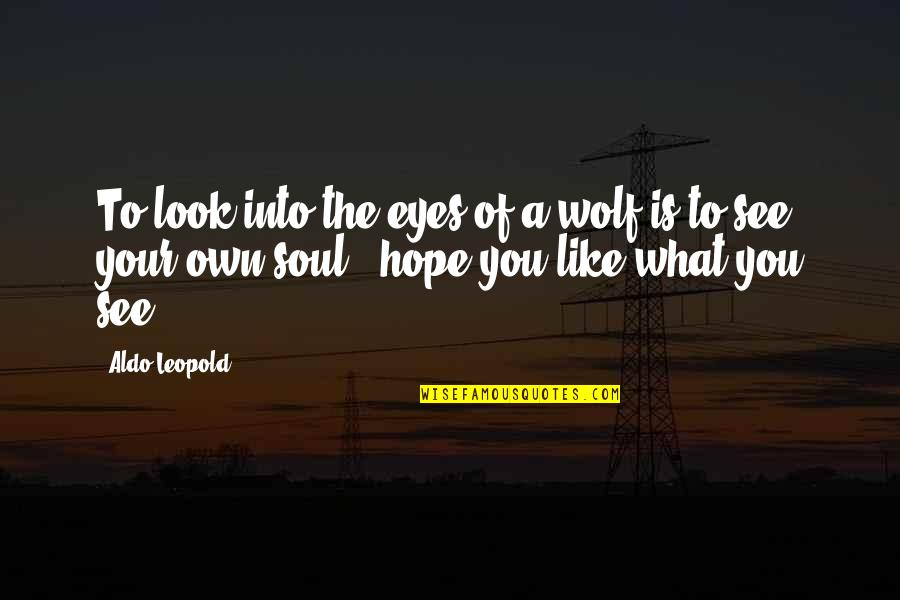 Aldo Leopold Quotes By Aldo Leopold: To look into the eyes of a wolf